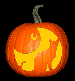 Batty Cat Pumpkin72