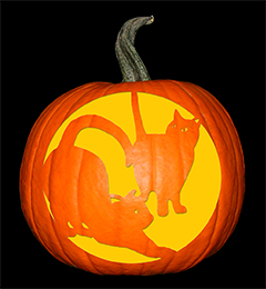 Black Cats Pumpkin72