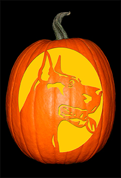 Great Dane Pumpkin72
