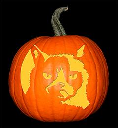 Grumpy Cat Pumpkin72
