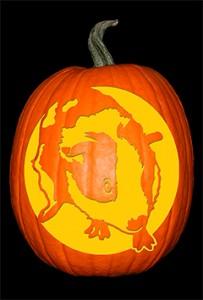 Guinea Pig Pumpkin72