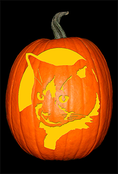 Handsome Cat Pumpkin72