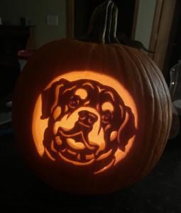 dog carve