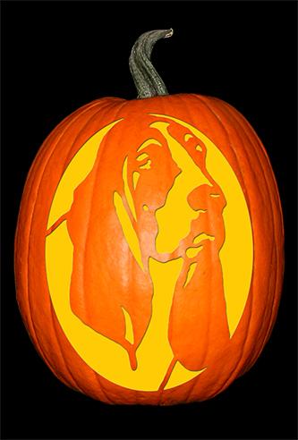 basset-hound-pumpkin