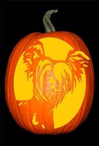 chinese-crested-1-pumpkin