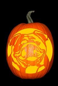 English Bulldog Pumpkin