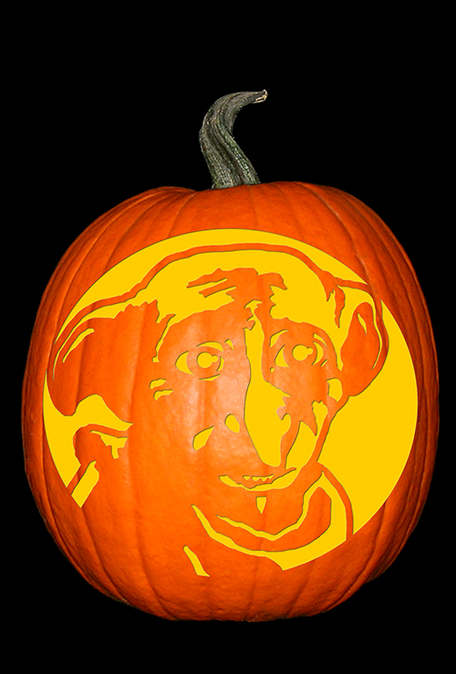 Harry Potter - Dobby Pumpkin