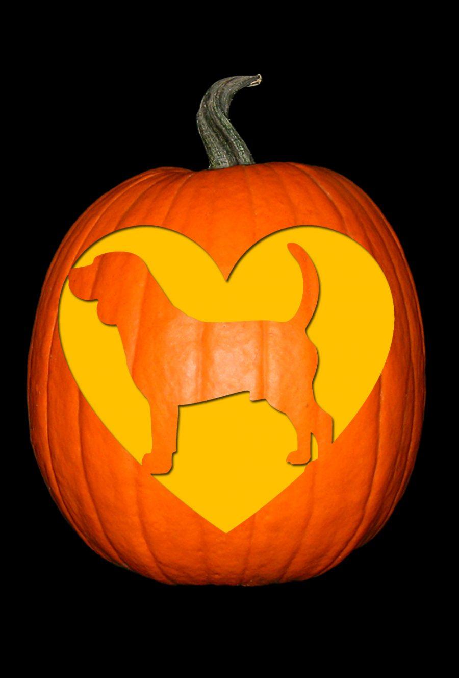 Love My Beagle Pumpkin