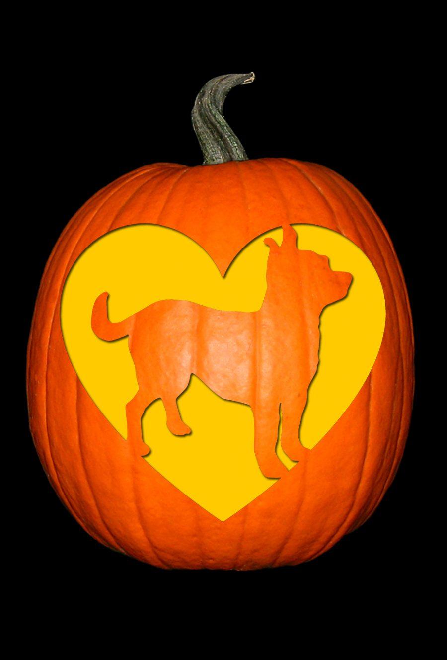 Love My Chihuahua Pumpkin