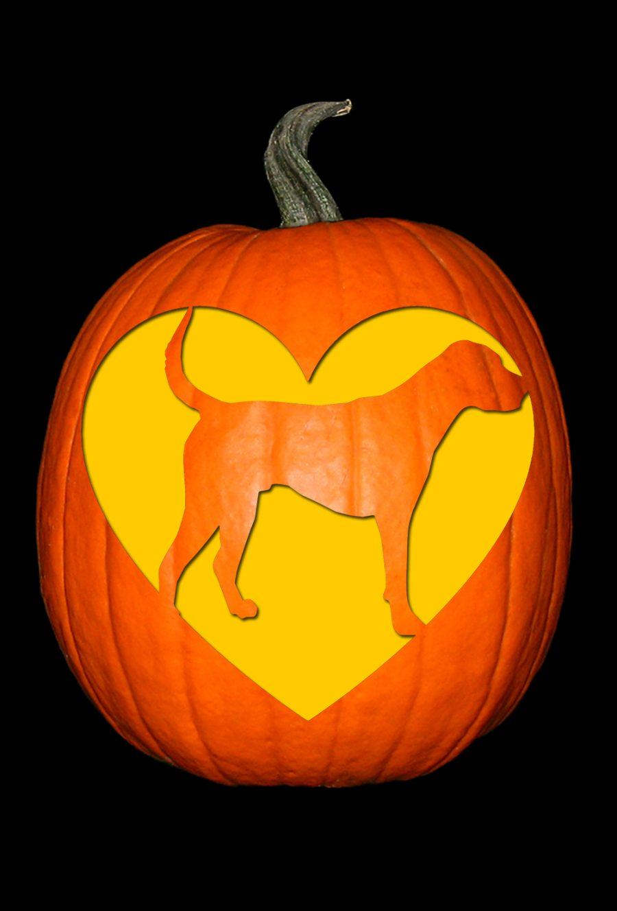 Love My Foxhound Pumpkin