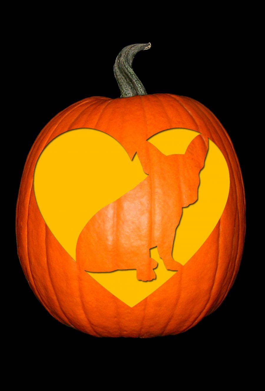 Love My French Bulldog Pumpkin