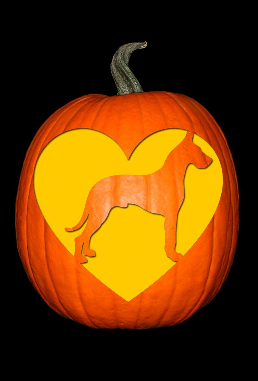 Love My Great Dane Pumpkin