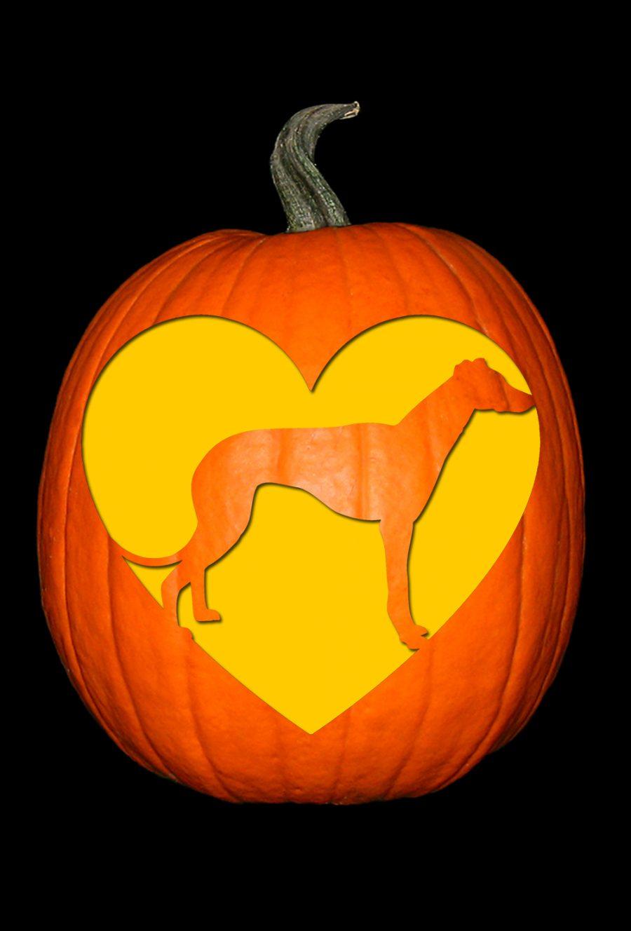 Love My Greyhound Pumpkin