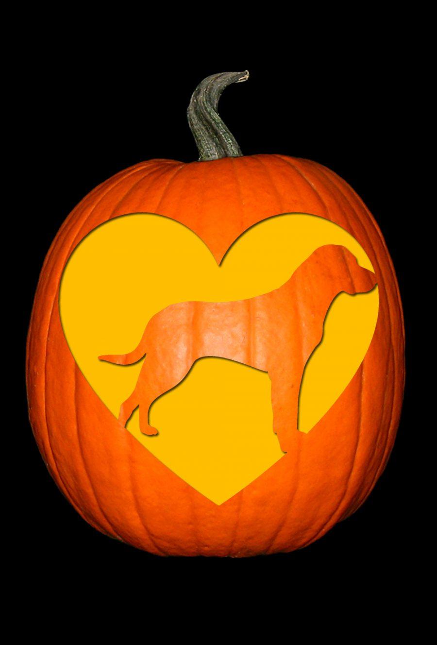 Love My Labrador Pumpkin