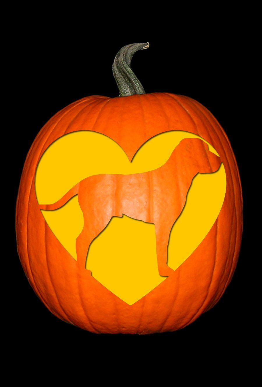 Love My Pointer Pumpkin