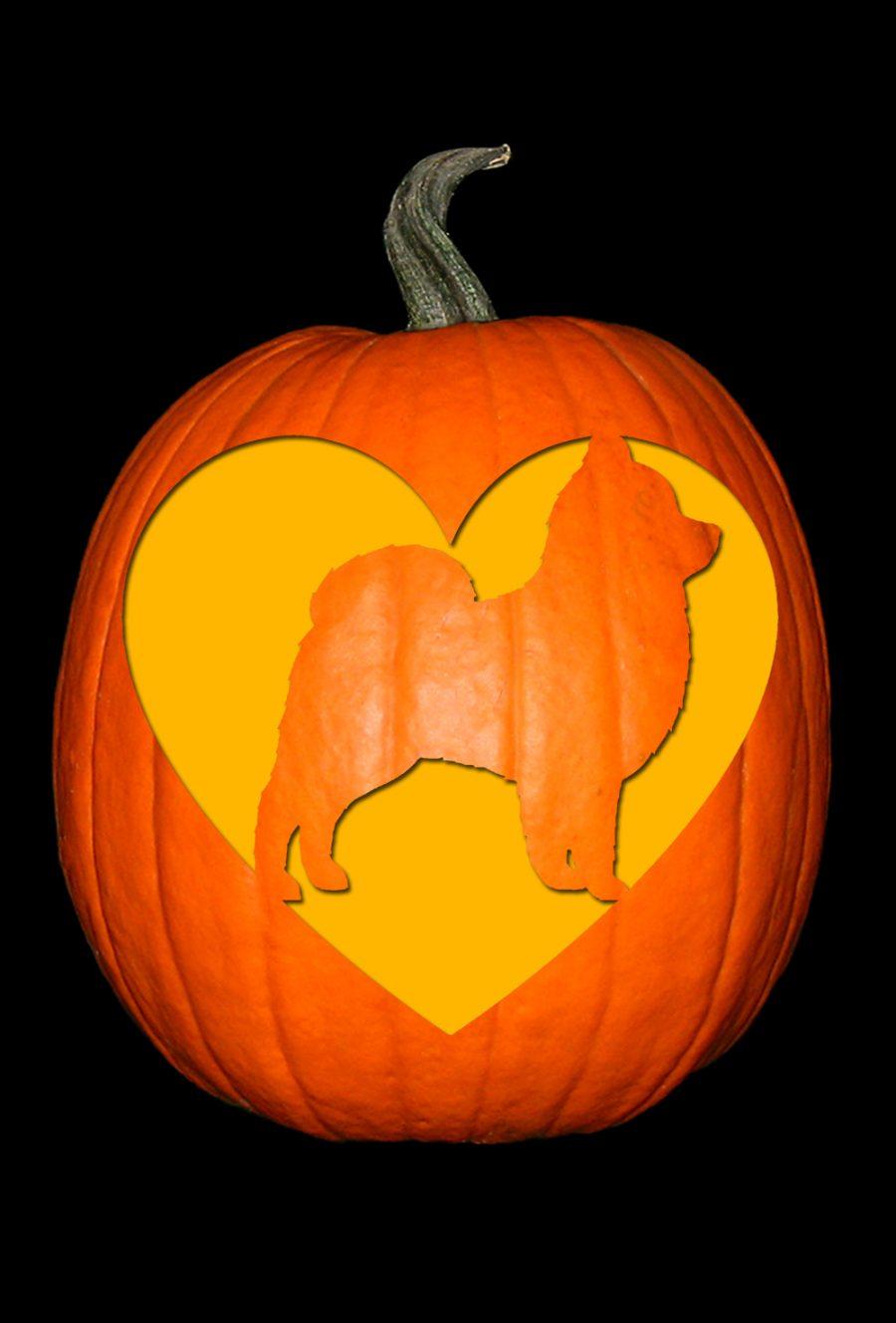 Love My Pomeranian Pumpkin