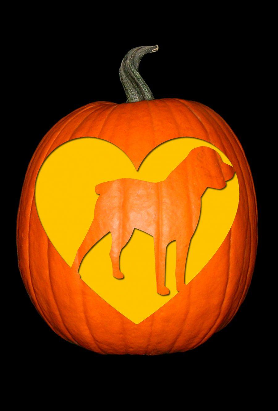 Love My Rottweiler Pumpkin