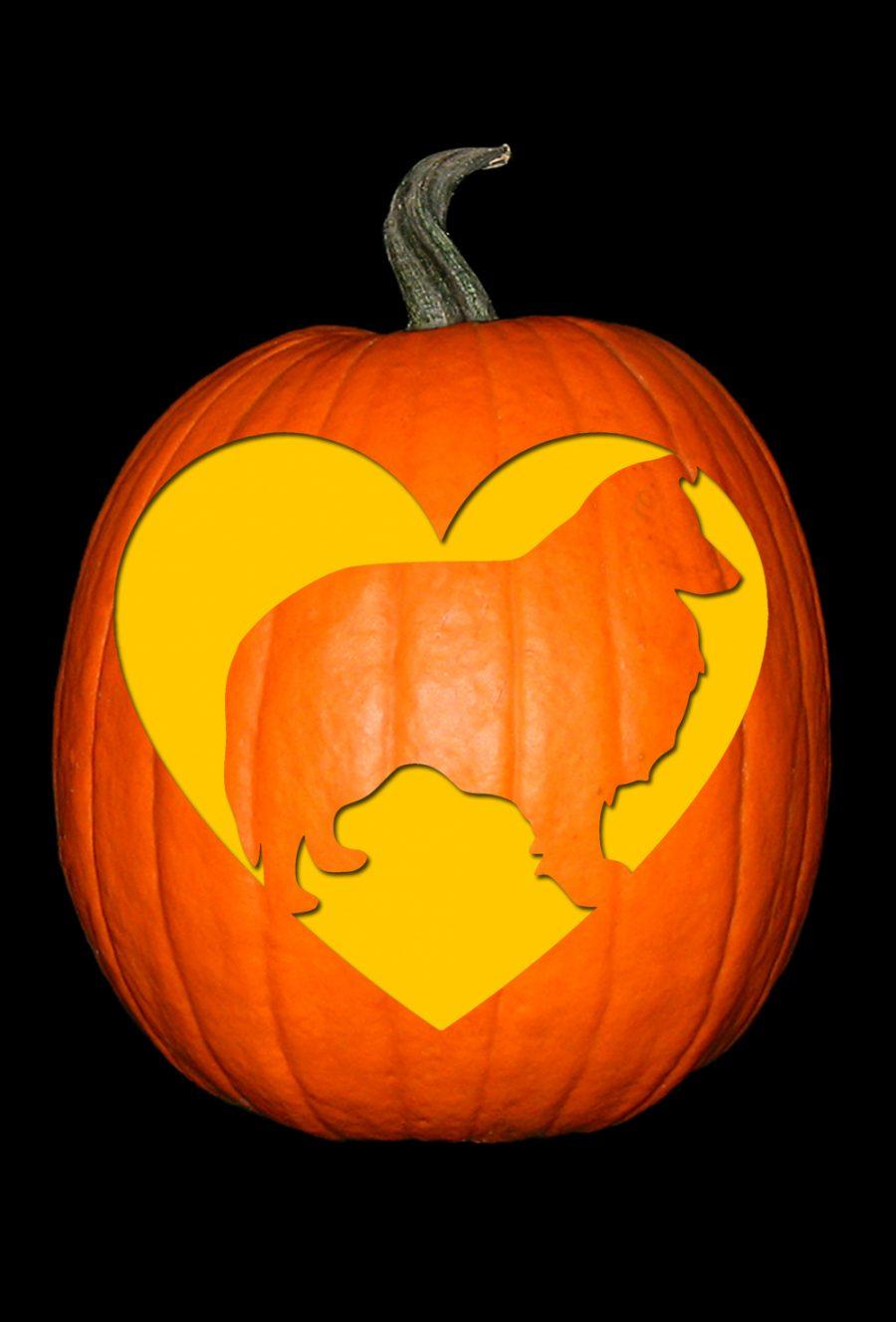 Love My Shetland Sheepdog Pumpkin