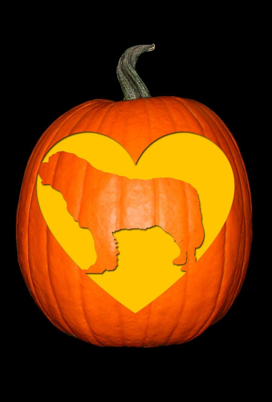 Love My St. Bernard Pumpkin