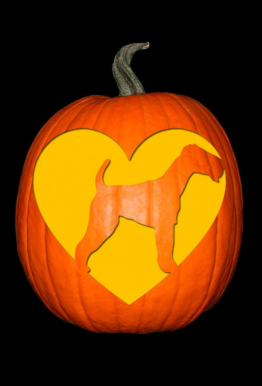 Love My Terrier Pumpkin