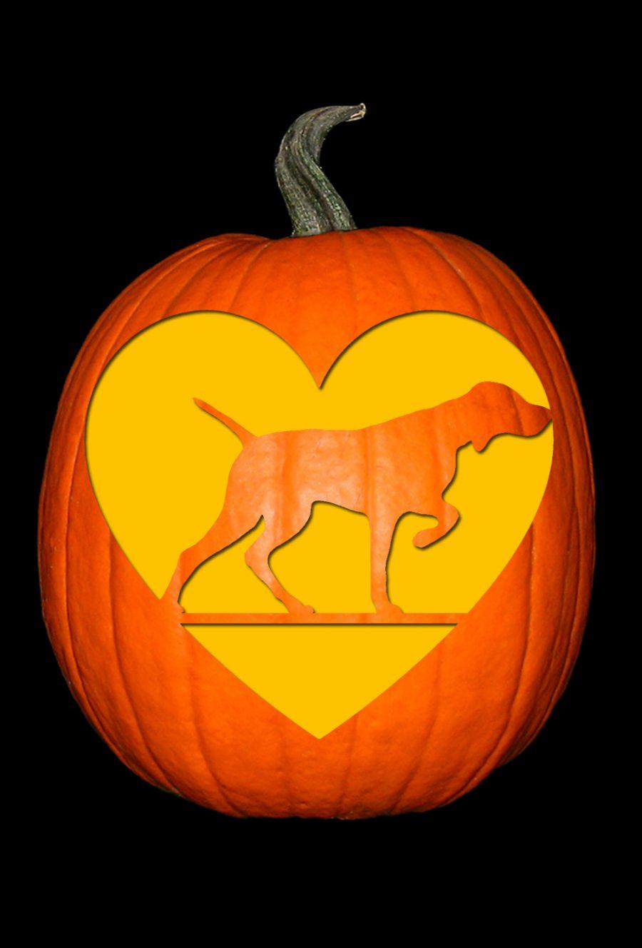 Love My Vizsla Pumpkin