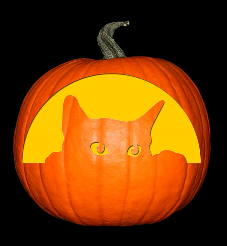 Cat - Peeking Cat Pumpkin