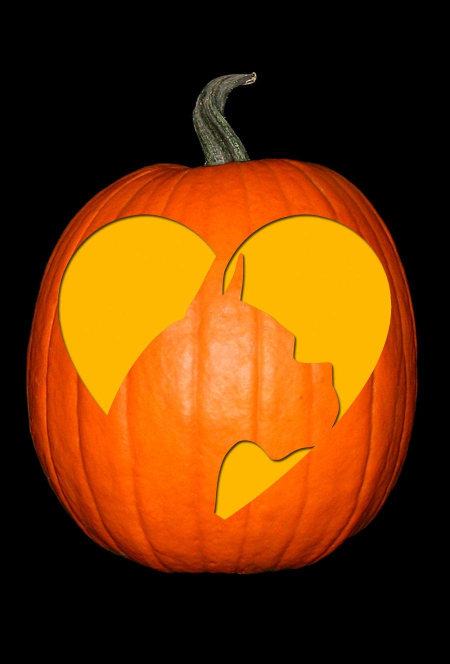 Love My Boxer 2 Pumpkin