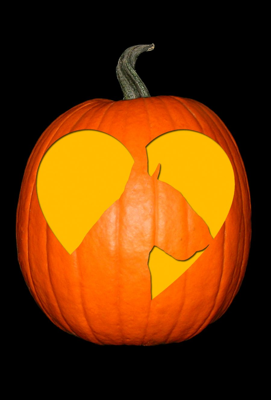 Love My Bull Terrier 2 Pumpkin