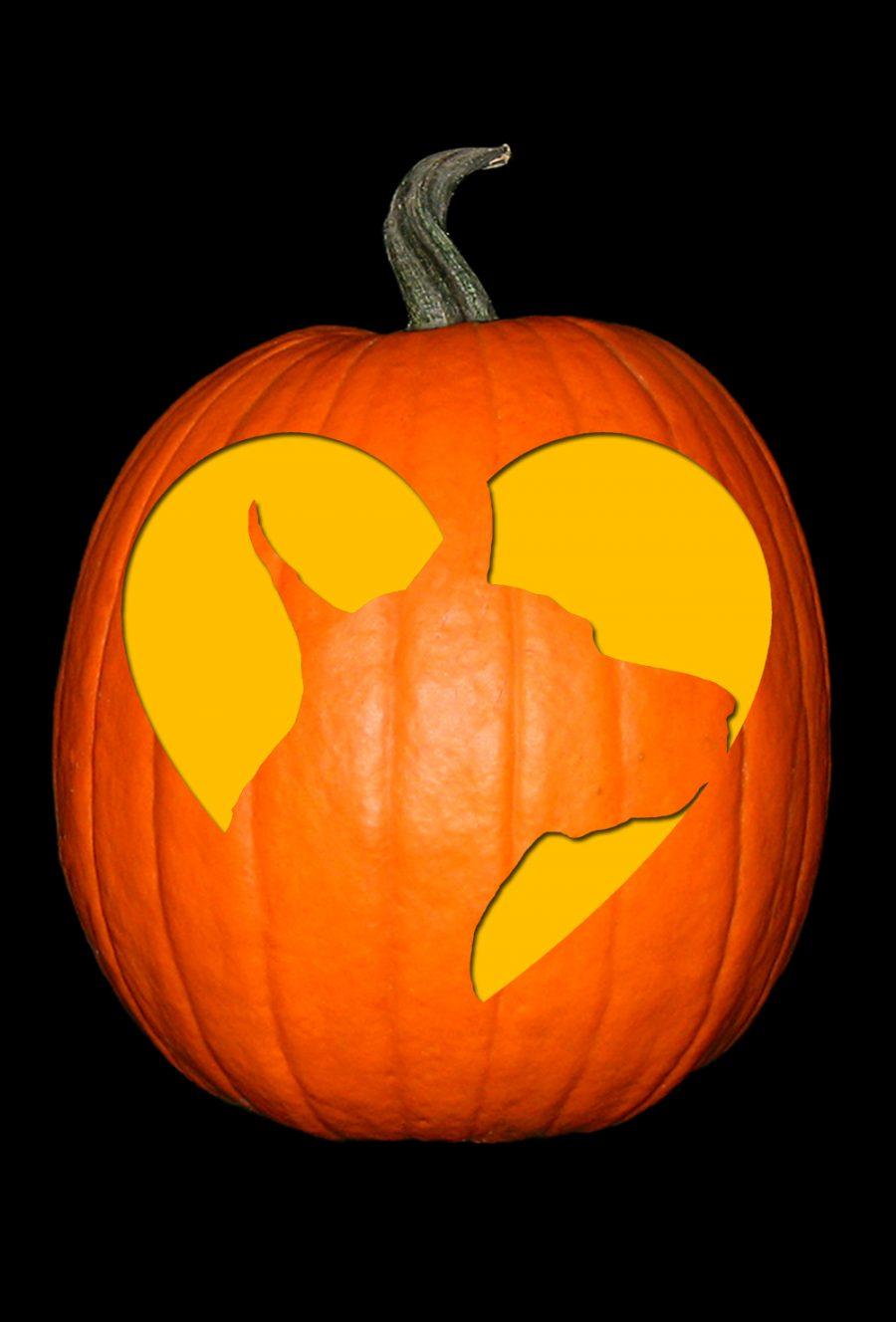 Love My Doberman 2 Pumpkin