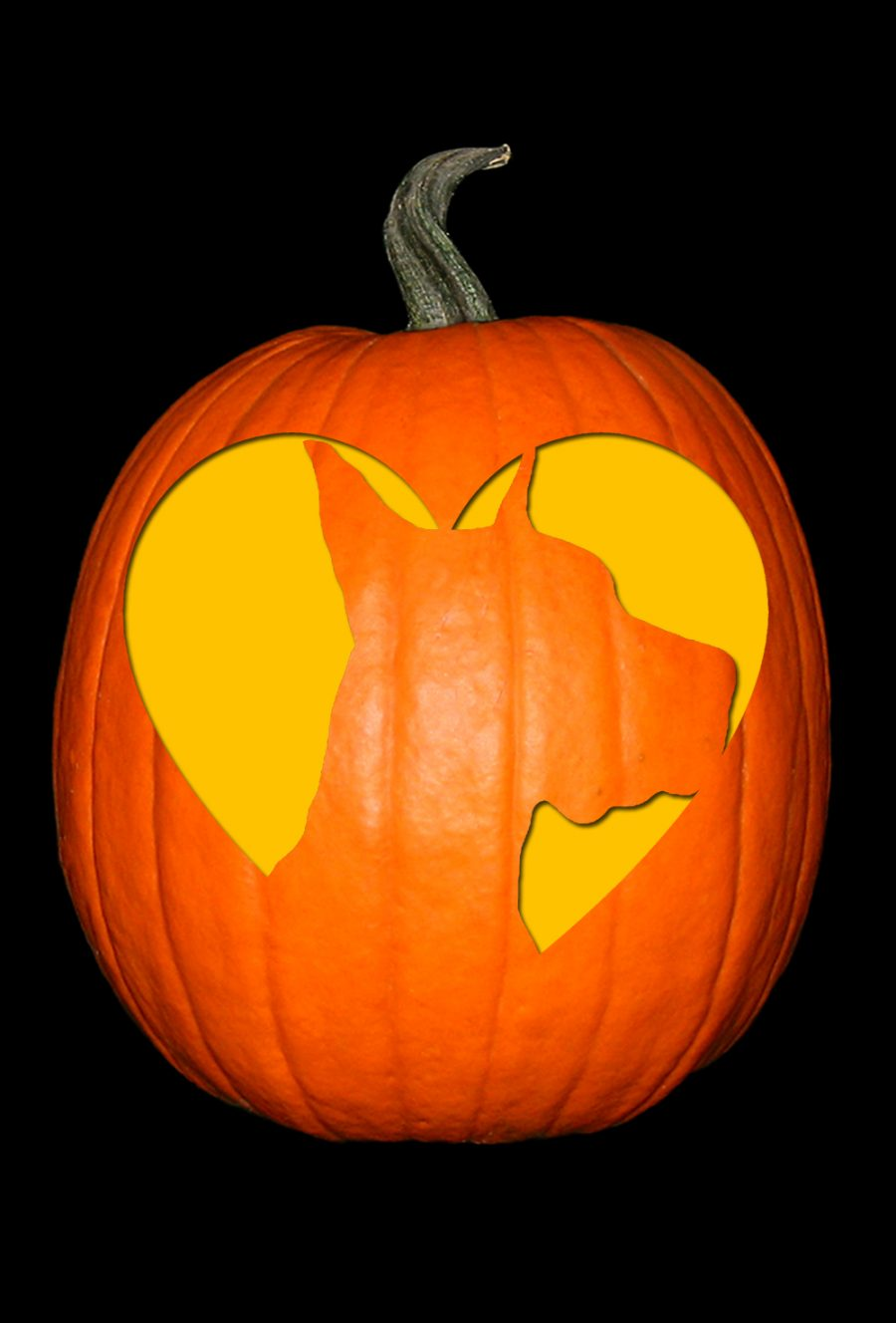 Love My Great Dane 2 Pumpkin